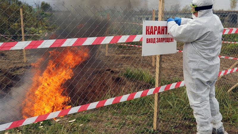 Роспотребнадзор предупредил туристов овспышке сибирской язвы вКитайской народной республике