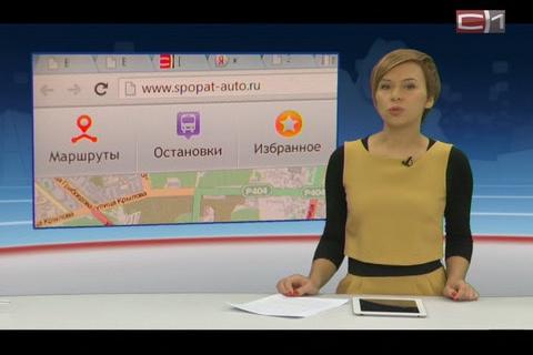 Новости Сургута -Общество